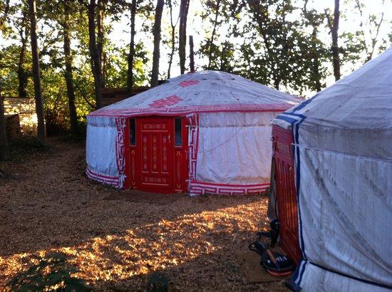 Sopley Lake Yurt Camp : Outside as sun comes up