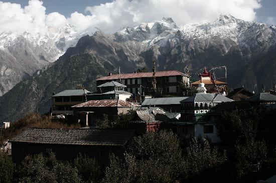 The Grand Shamba-La: Kalpa centre (10 mns walk)