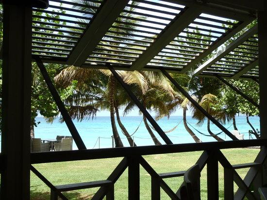 The Beach House Restaurant : Luscious Tropical Beachfront Setting