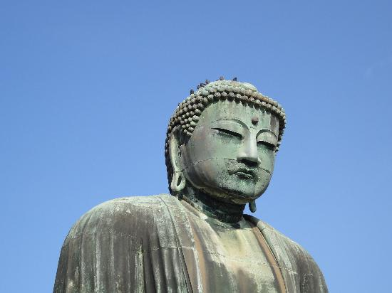 Kotoku-in (Great Buddha of Kamakura): 大仏2