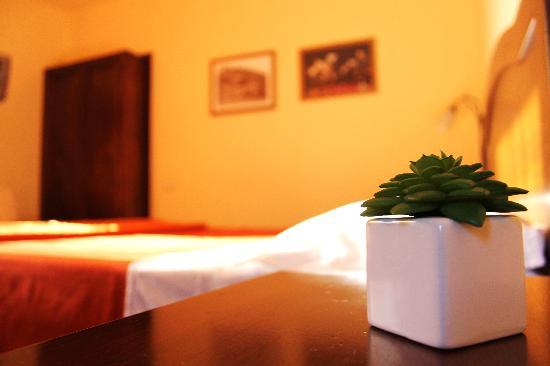 Bed & Breakfast Il Rivo: dettagli