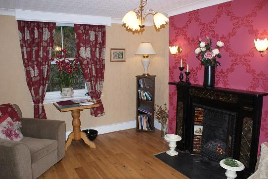 Dolweunydd Bed & Breakfast: Guests' Lounge