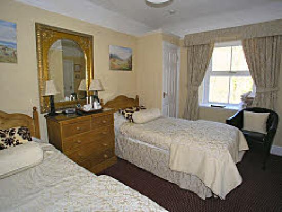 Dolweunydd Bed & Breakfast: Our Twin Room