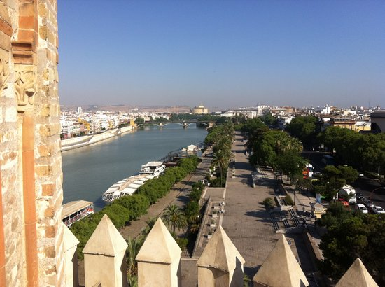 Torre del Oro: A view from the top on a summer day.