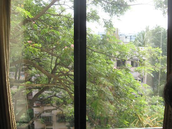 Hotel Karl Residency: view from room