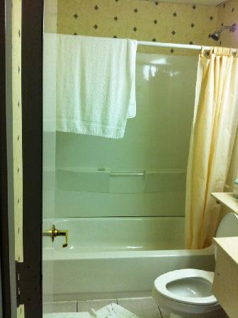 Rodeway Inn: Shower