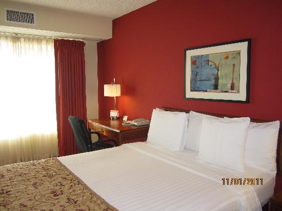 Residence Inn Denver Highlands Ranch : Room