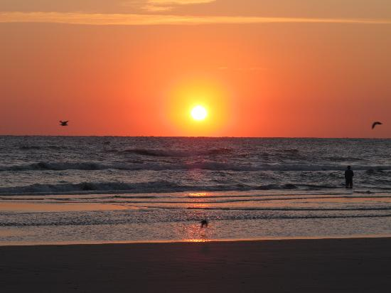 Daytona Beach Shores, FL: early in the morning...