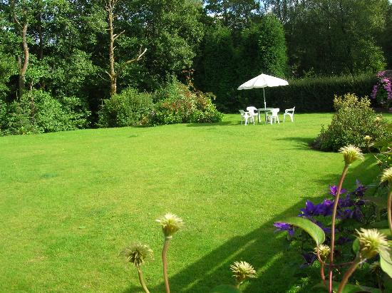 Relax in the sunny garden - Picture of Distant Hills Guest House ...
