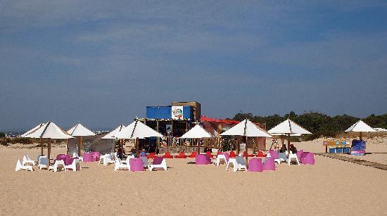 Tavira Island: Beach bar
