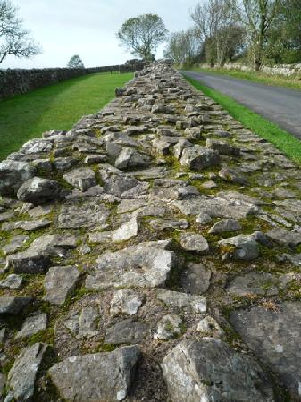 Abbey Bridge: Section of Hadrian's Wall 10 minutes drive from B&B