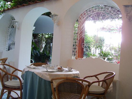 Hotel Gatto Bianco: cortile