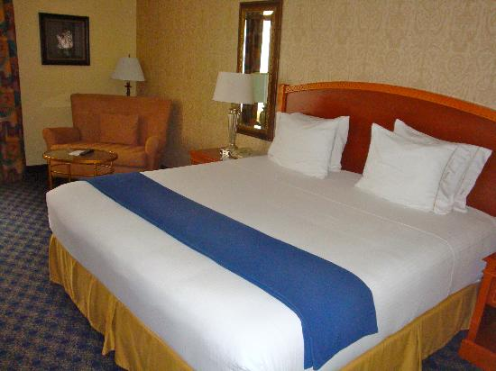 Holiday Inn Express Hotel & Suites The Woodlands: Bedroom