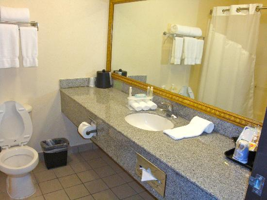 Holiday Inn Express Hotel & Suites The Woodlands: Bath