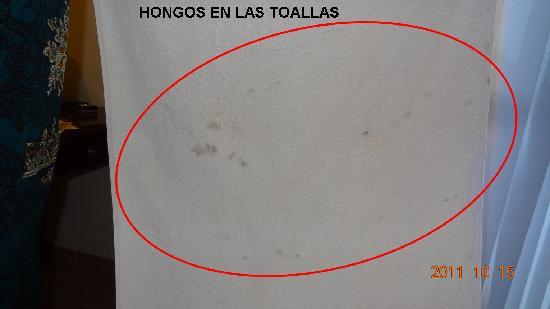 Melia Cayo Santa Maria: Toallas con Hongos