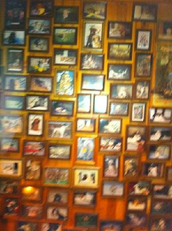 The Moose Preserve Bar & Grill: favorite dog wall of fame