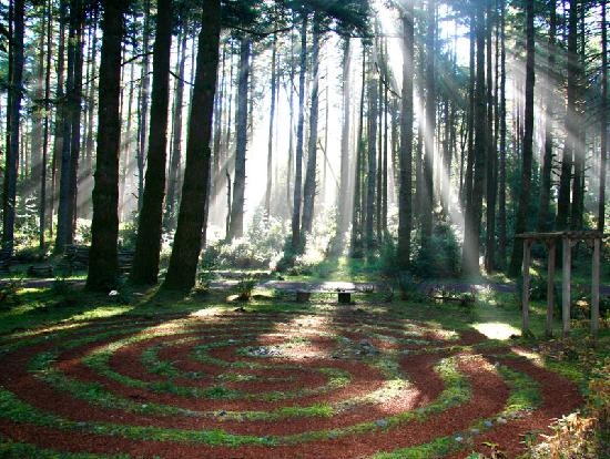 Port Orford, OR: Walking labyrinth in the forest.