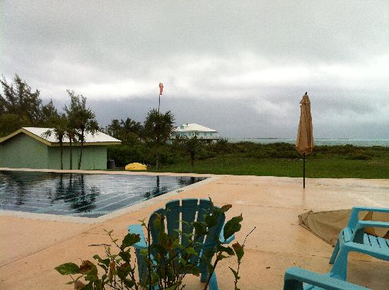 Carriearl Boutique Hotel: The Pool