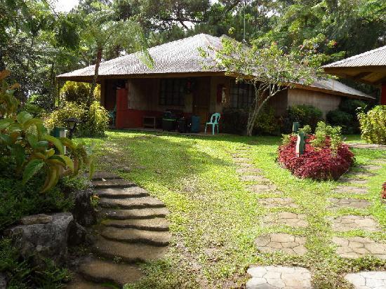 Eden Nature Park & Resort : Holiday Lodge