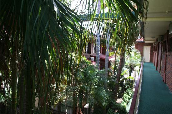 Best Western Ipswich Heritage Motor Inn: The hotel's gardens