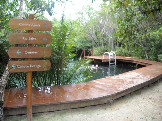 Hacienda Tres Rios: Cenotes on premises