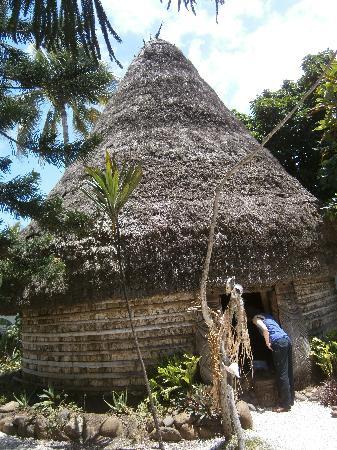 Musee de Nouvelle Caledonie: Trad hut