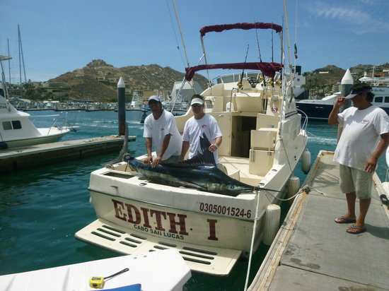 Edith Sport Fishing