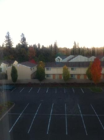 Hilton Garden Inn Corvallis : veiw from our room on the South side