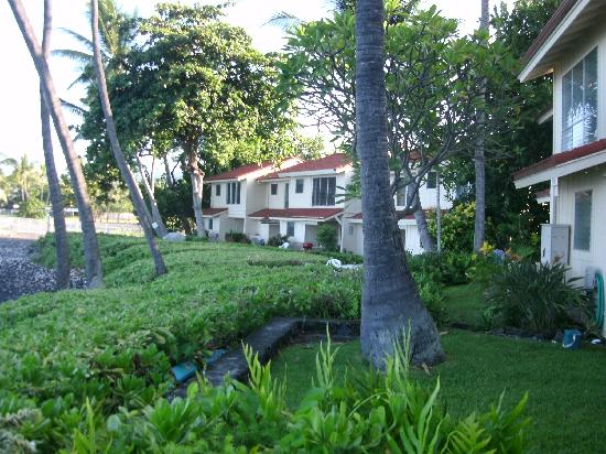 Keauhou Kona Surf & Racquet Club: from grassed area in front of villa