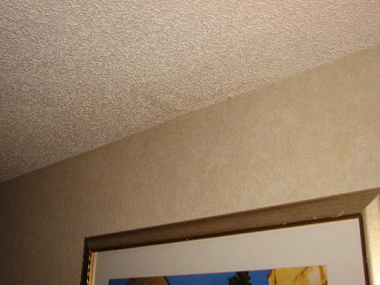 Ramada Anaheim Convention Center: water stains on ceiling
