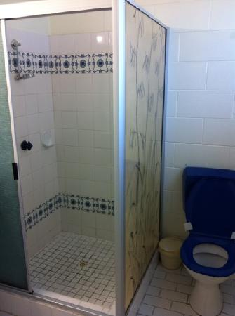 Alexandra Park Motor Inn: the dated bathroom
