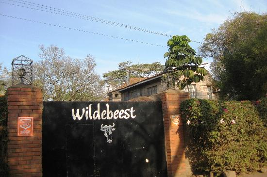 Wildebeest Eco Camp: Welcome! Karibu!