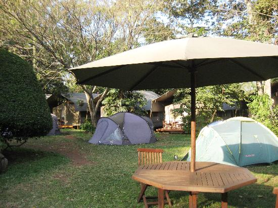 Wildebeest Eco Camp: From dining to banda or tent