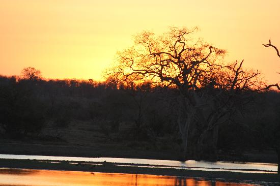 Selous Game Reserve: solori dell'Africa