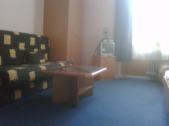Pension Messe: Vista della camera 15