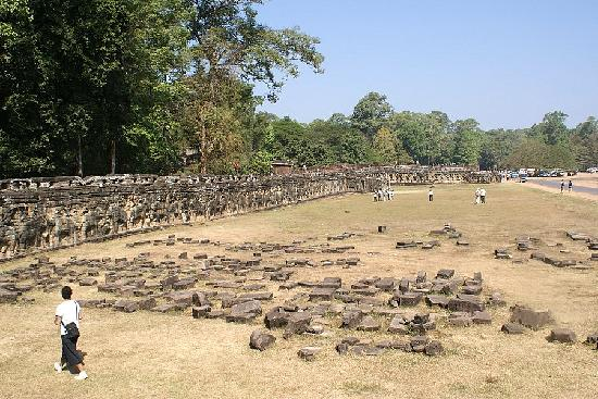 Terrace of the Elephants: The Large Field