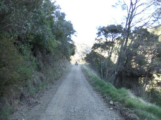 Cable Bay Adventure Park: Great trails