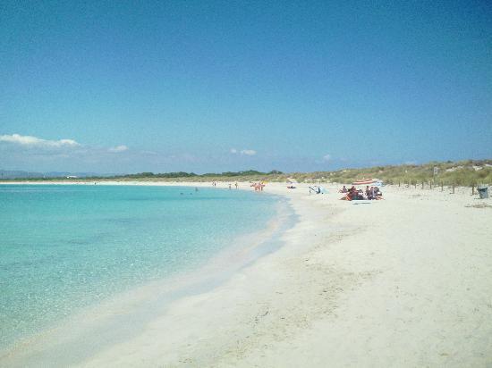 Cala Tarida, España: spiaggia