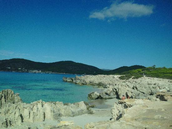Hotel Playasol Cala Tarida: ottimo