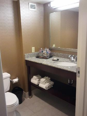 Sheraton Metairie New Orleans: Bathroom