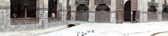 โบอินาเนียเมเดอร์ซา: sharing the peace with the pigeons