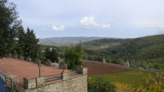Tours in Tuscany - Private Tours: Panoramic Tuscany from the vineyard