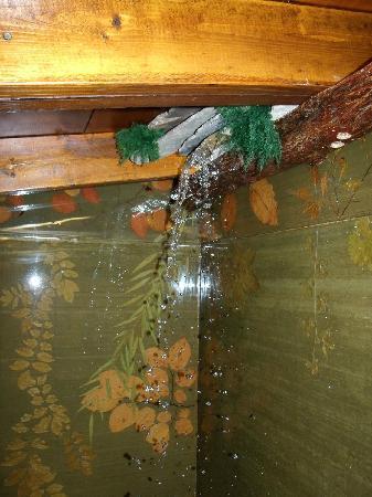 Muleskinner Lodge: Waterfall Shower