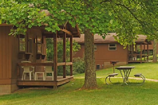 Burr Oak Lodge and Conference Center : Cabin
