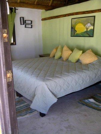 Iguana Blue : habitación :)