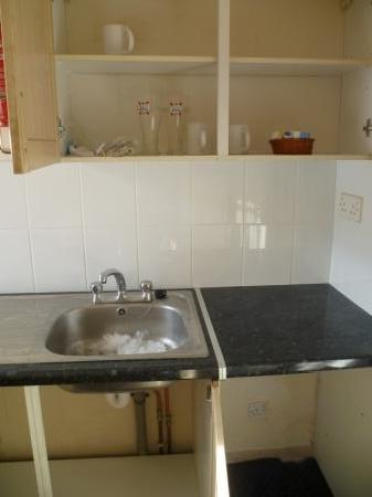 Camden Apartments London: 'Kitchenette' with no kettle, microwave, pots & pans or utensils. The ice in the sink is from wh