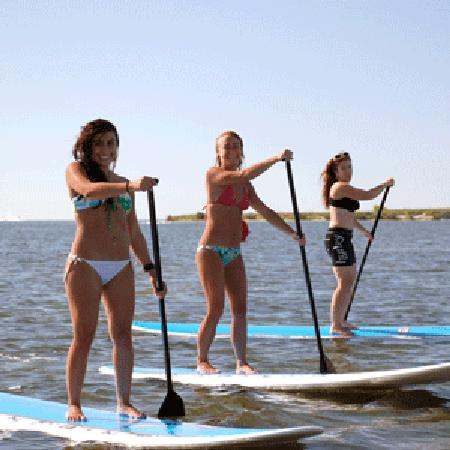Water Board Sports >> Stand Up Paddle Board Rentals Picture Of Adventure Water Sports