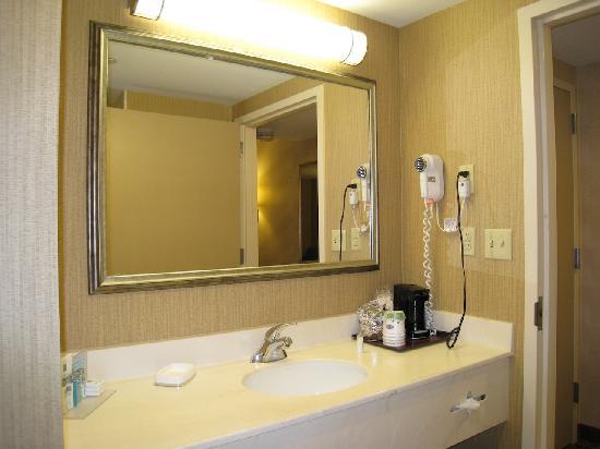 هامبتون إن بوستون كامبريدج: Bathroom