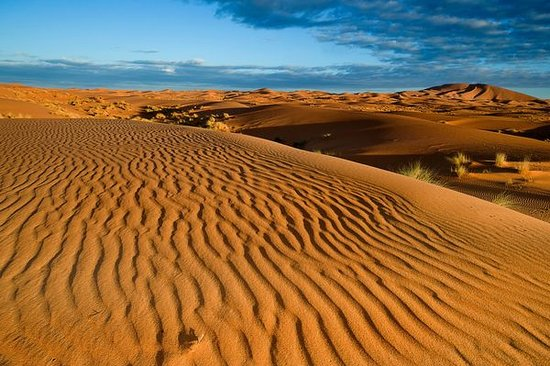 Rutas Por Marruecos Travel Services, S.a.r.l.: Erg Chebbi