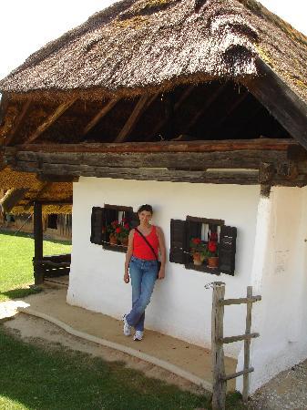 Pityerszer: casa con tetto di paglia